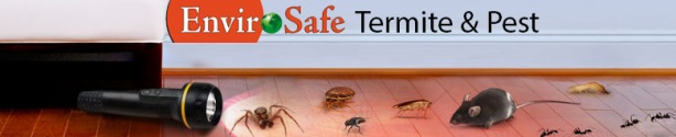 Envirosafe Termite & Pest